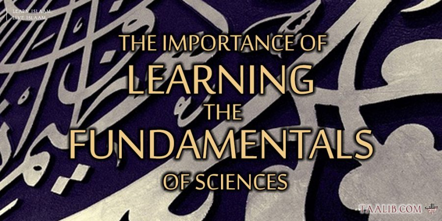 Taalibdotcom-The-Importance-of-Learning-the-Fundamentals-of-Sciences